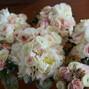 Mountain Oak Florist and Design 8
