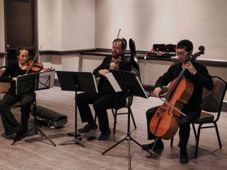 Columbia Strings 1