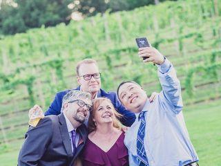 7 Vines Vineyard 2