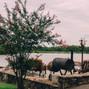 Cedar Cove Ranch and Resort 23