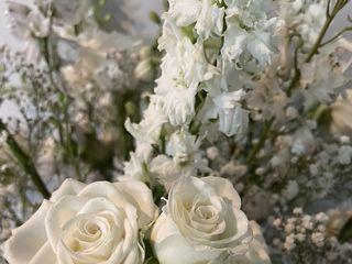 Harrington Flowers 4