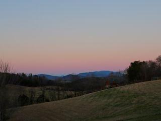 Blue Mountain Mist 4