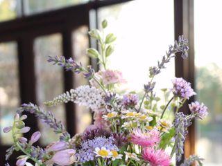 Free Range Flowers at Martin Farm 3