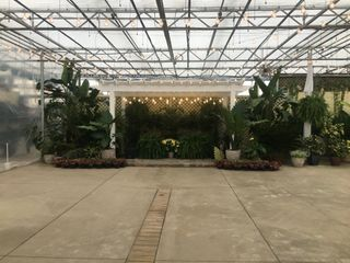 Buchwalter Greenhouse 1