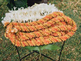 Sanddollars Floral 1