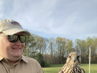 Wing Blade Falconry Events 3