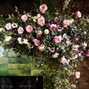 Rebecca Shepherd floral design 18