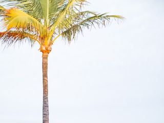 Hawks Cay Resort 2