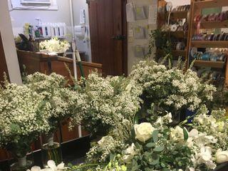 Harrington Flowers 3