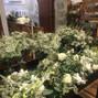Harrington Flowers 6