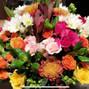 Aniyah Flowers 4