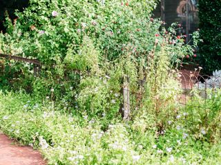 Farmers Branch Historical Park 4