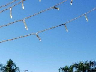 Galveston Island Palms Outdoor Events & Parties 4