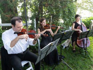 ViVa Strings 4
