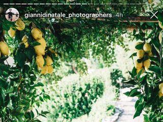 Capri Moments 3