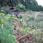 Colibri Gardens 10