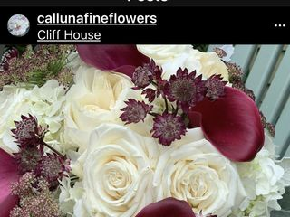 Calluna Fine Flowers and Gifts 5