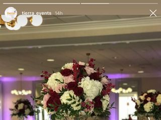 Events by Mr Butler 3