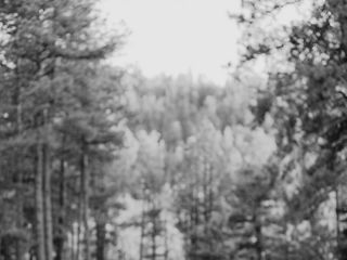 Wynsum + Marrow Photography 3