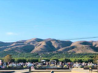 Limoneira Ranch 2
