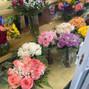 800ROSEBIG Wholesale Wedding Florist 24