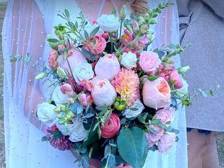 All Purpose Flowers 1