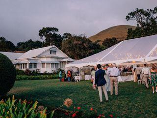 Big Island Tents 1