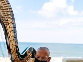 Vince Zentner Harpist 3