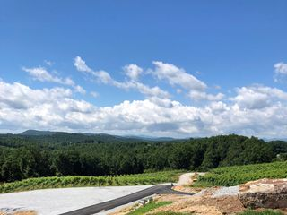 Point Lookout Vineyards 3
