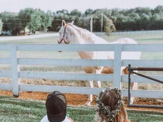 Saddle Woods Farm 2