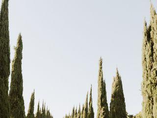 Bella Vista Groves 4