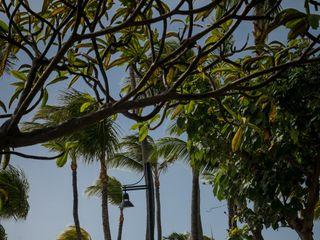 Hilton Aruba Caribbean Resort & Casino 7