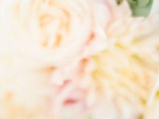 Brandy Grace Photography 1