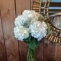 For Better For Less Wedding Flowers 16