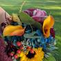 Phillip's Flowers 38