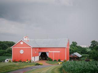 Barn Swallow Farm 2