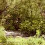 Springville Ranch 15