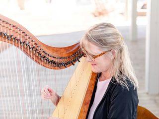 Kim Perkins Charleston Harpist 4