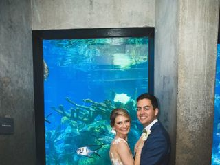 New England Aquarium 7