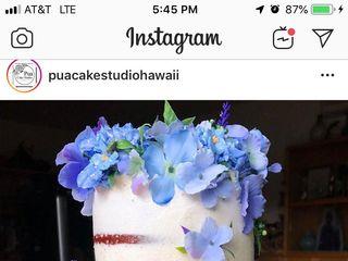 Pua Cake Studio Hawaii 5