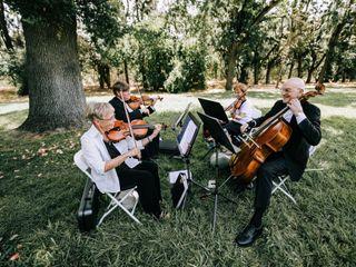 Camellia String Quartet 1