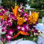 Hilton Rose Hall Resort & Spa 22