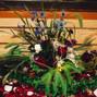 Anny Heid Flowers 7