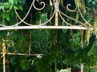 Del Rio Vista Garden 1