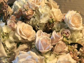 o'cie floral 5