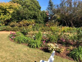 Atlanta Botanical Garden 3