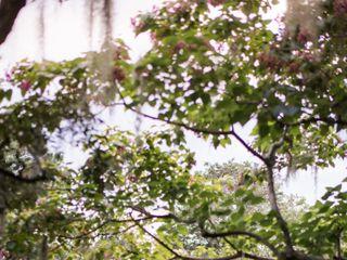 Airlie Gardens 6