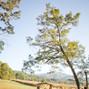 Shenandoah Woods 18