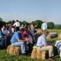 Colley Hill Farm 9