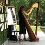 Tiffany Envid - Harpist 8
